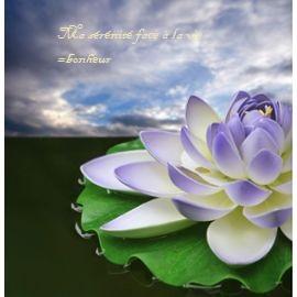 affiche-poster-fleur-de-lotus-bleu-60x62cm-885051850_ML